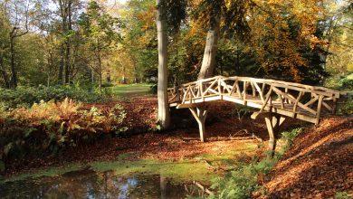 De top 10 mooiste natuurgebieden in Groningen
